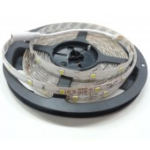 16.4Ft 12V 5050 Single Color Horse Race Flexible LED Strip 30Leds/M