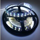 Dual Lines DC 24V SMD 5050 RGBW LED Strip Light 5M 600LEDs