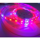 Red/Blue 4:1 5050 Plant Growing LED Strip Light Hydroponic 12V 1M